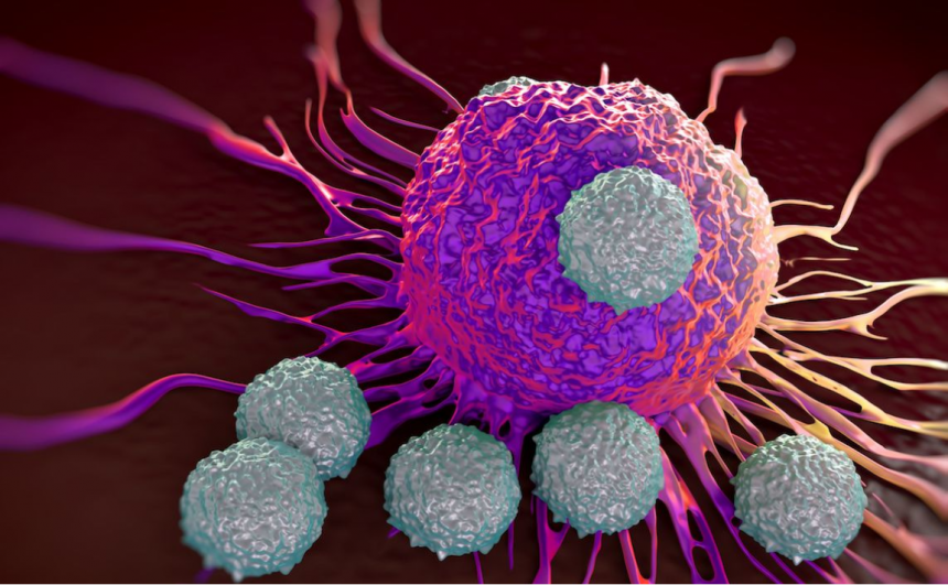 How Can I Boost My Immune System To Fight Cancer